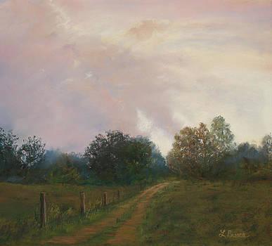 Evening Sky by Linda Preece