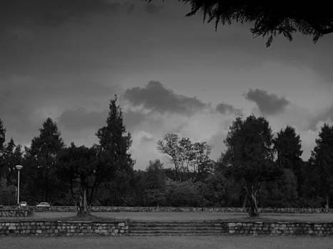 Evening Walk by Salman Ravish