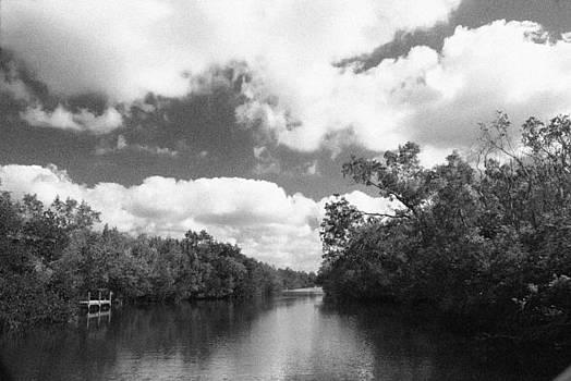 Everglades Dock by Ari Jacobs