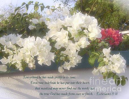 Every Pretty Thing by Debi Dmytryshyn