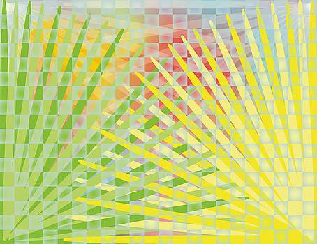 Exuberant Weave by Christian Karl