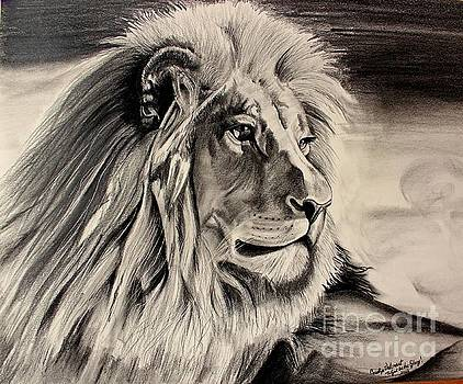 Eye of the Lion by Carolyn Valcourt