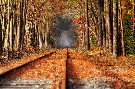 Fall on the Tracks by Tamera James