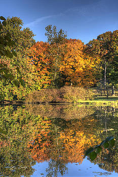 Fall - Which Side is Up by Ed Cilley