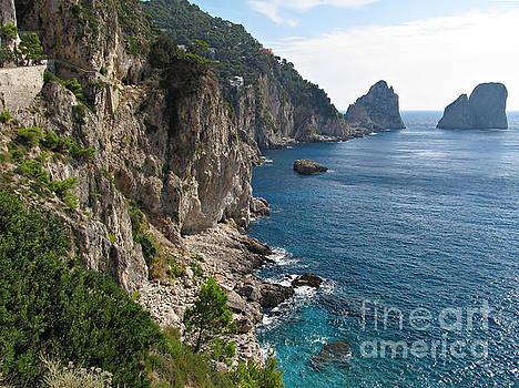 Faraglioni Rock formation on island Capri by Kiril Stanchev