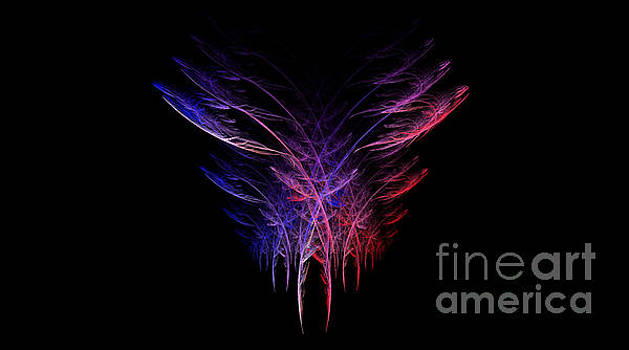 Feathers in Motion by Amanda Collins