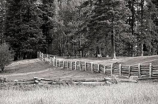 Fenceline by Doug Fredericks