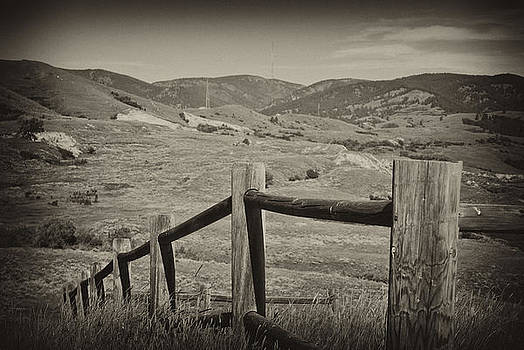 Fencing by Kathy Williams-Walkup