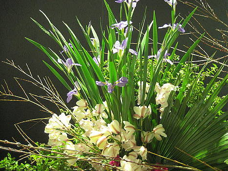 Festa Atibaia 2 by Maria Akemi  Otuyama