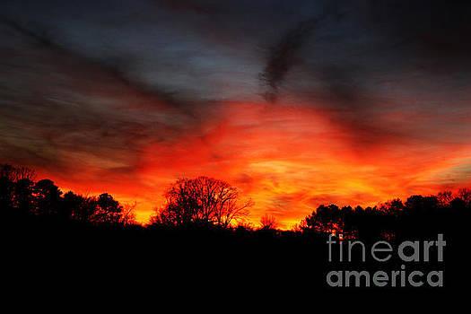Fiery Sky... by Jinx Farmer