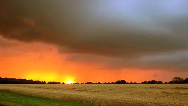 Fighting Sun by Dave Woodbridge
