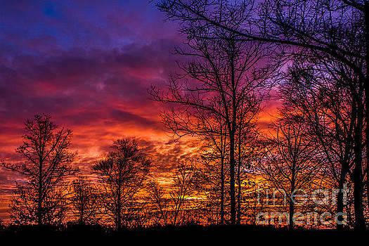 Fire In The Sky by Debra K Roberts