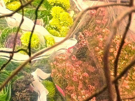 Fleurs De Bodega by Peri Lyons