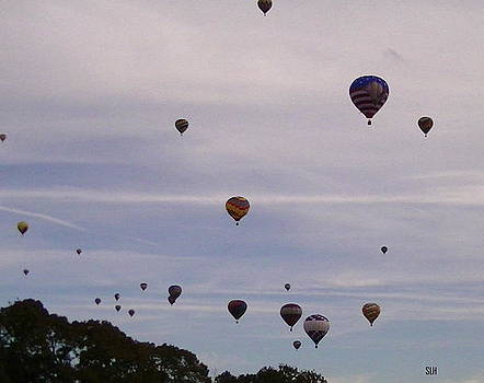 Flying balloons by Lee Hartsell