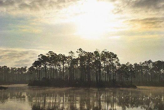 Fog Island by Ari Jacobs