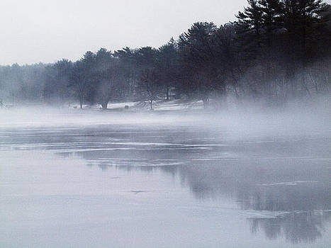 Foggy Day on the Lake by Maureen Cunningham