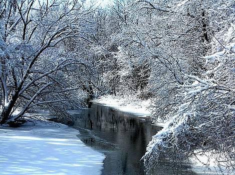Frosted Creek by Debbie Finley
