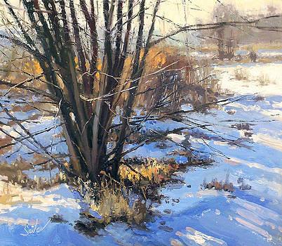 Frozen Creek Tag Alder by Larry Seiler