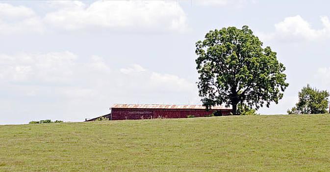 Ft Defiance Barn in the summer by Bill LITTELL