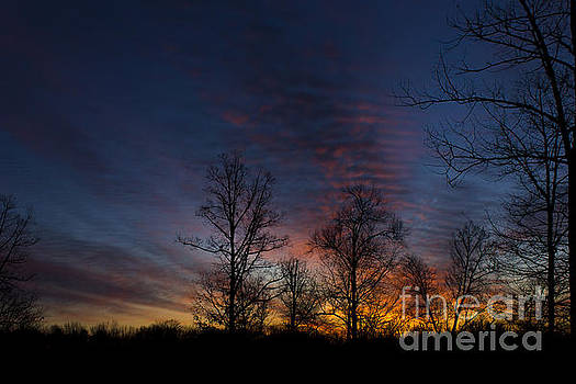 Full Morning by Debra K Roberts