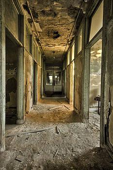 Golden Decay by Richard Zoeller