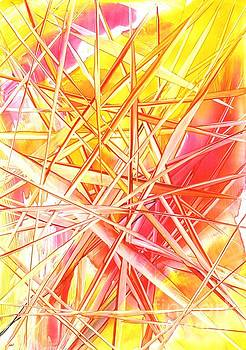 Golden Shards by Julie Wrathall