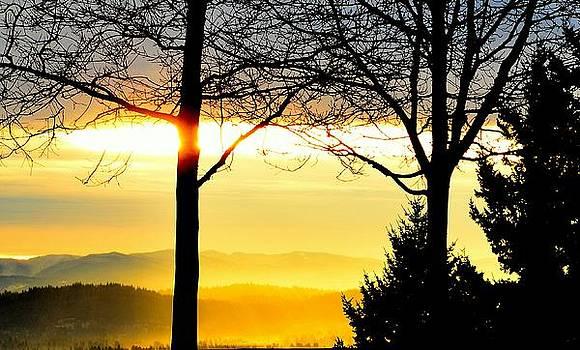 Golden Sunrise by Don Herd