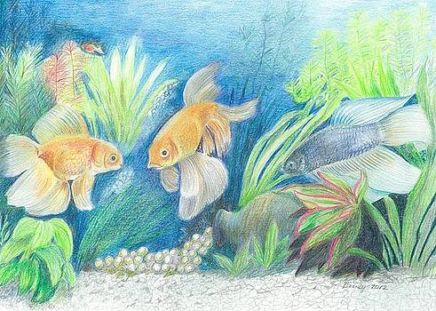 Goldfish found the Treasure by Eve-Ly Villberg