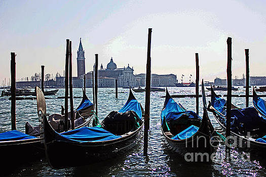 Gondolas of Venice by Alison Tomich