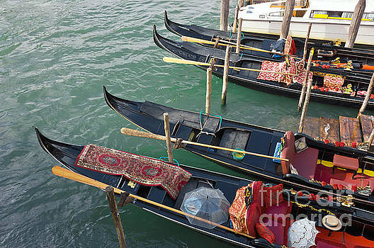 Gondolas waiting for tourists in Venice by Kiril Stanchev