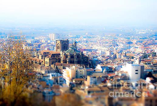 Granada Cathedral  by Tony Unwin