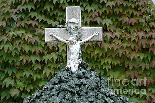 Grey marmoreal cross with trailing ivy by Angela Kail
