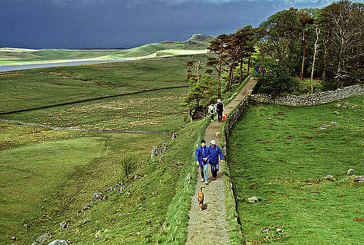 Hadrians Wall  Northumberland UK by David Davies