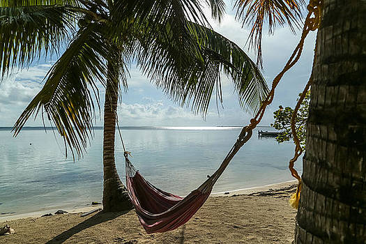 Hanging in a Hammock by Tyler Olson