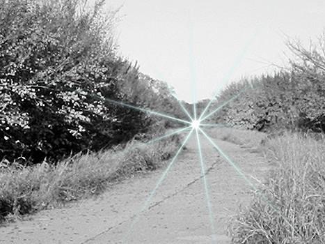 Haunted 66 by Trevor Hilton