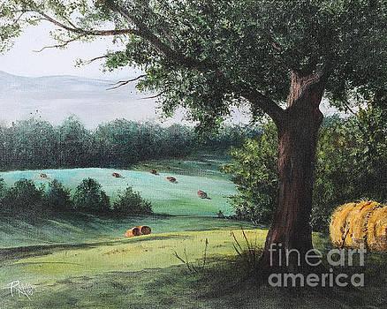 Hay Field In Ohio by Rita Miller