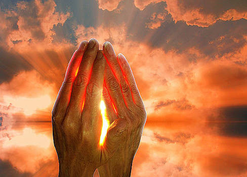 Holding the Sun by David Murphy