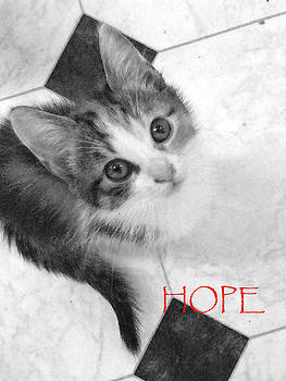 Hope by Beth Haines