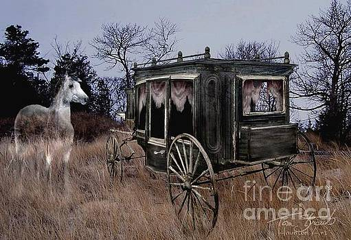 Horse and Carriage by Tom Straub