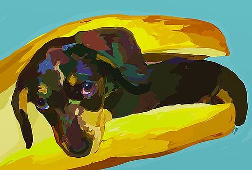 Hot Dog by Patti Siehien
