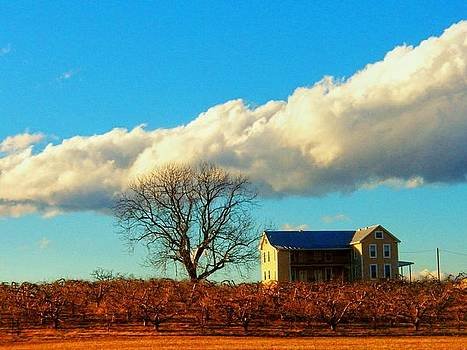 House Cloud and Tree by Joyce Kimble Smith