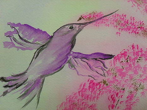 Hummingbird by Ginny Youngblood