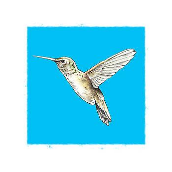Hummingbird by Keith May