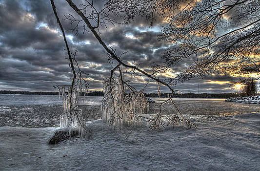 Ice by Tage Persson