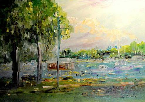 Impresija na Savi by Buba Glodjovic