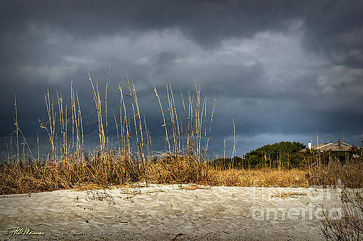 Inlet Dunes by Phil Mancuso