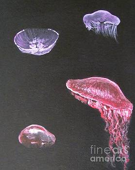 Jellyfish by Elaan Yefchak