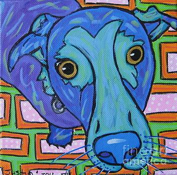 Labrador  by Susan Sorrell