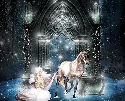 Lady of Winter by Amanda Struz