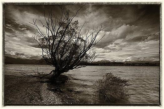 Lake Wanaka by Craig Brown